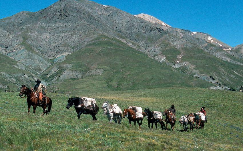 Bitterroot pack trip in Wyoming