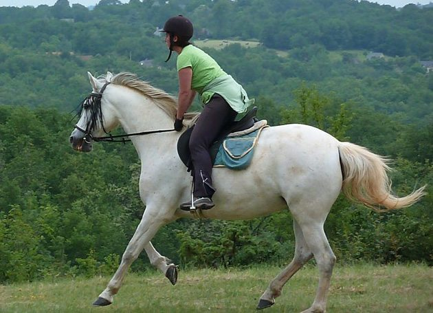Horseback riding tour in France-Cantering on the Domaine Des Garennes