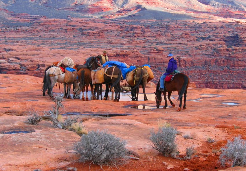 Ride through the Grand Canyon on this horseback riding trip in Arizona