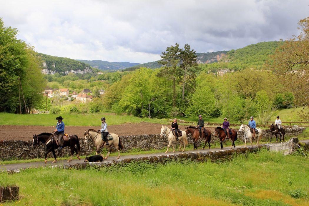 Horses on Malbec trail