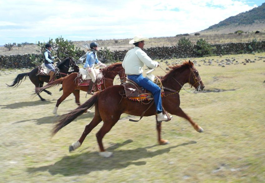 Enjoy good riding on this equestrian holiday in Mexico at Rancho Puesto del Sol