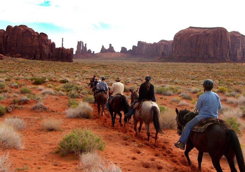 Ride well-trained horses during your horseback tour in Arizona