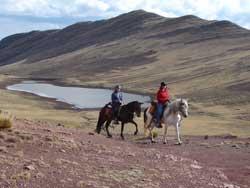 Peruvian Paso horse ride