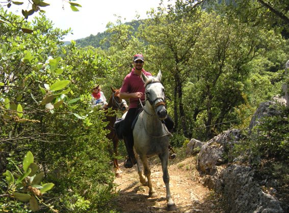 Self-guided French Riding Holiday