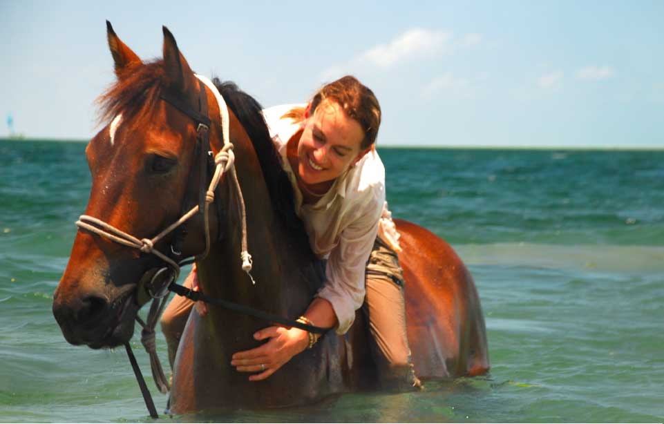 Exceptional Equestrian Adventures